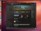 screenshot-client-steam-pentru-linux